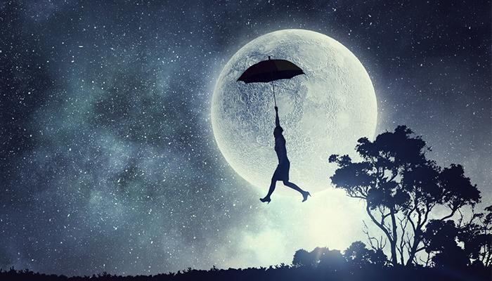 flying-dream