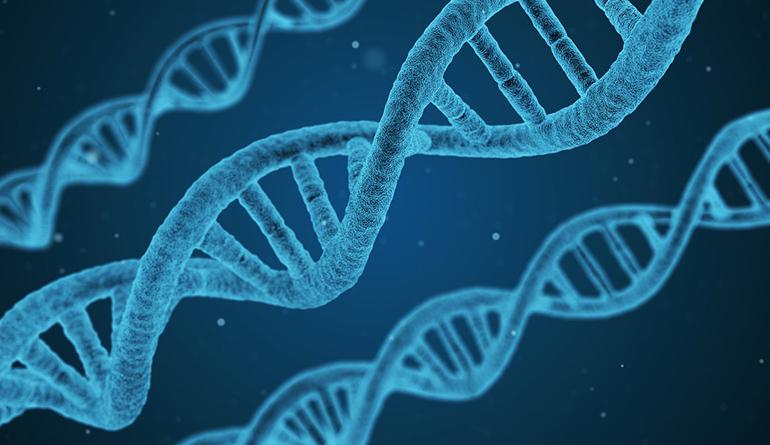 sleep-improves-your-genes